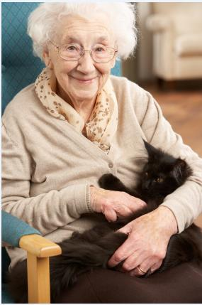 Elderly woman holding black cat